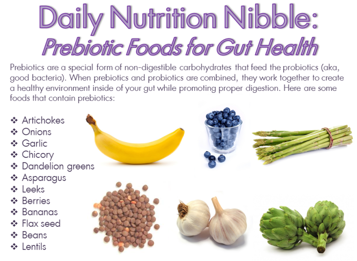 dnn-prebiotic-foods-e1445088933351